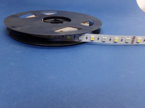Led Strip RGB + 6000k white Per Cut Length 24 VOLT